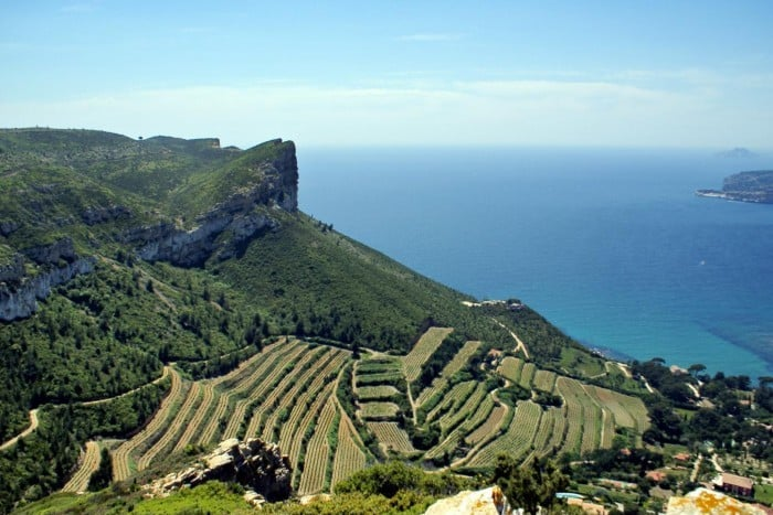 Full day Wine Tour to Bandol and Cassis AOP wine regions