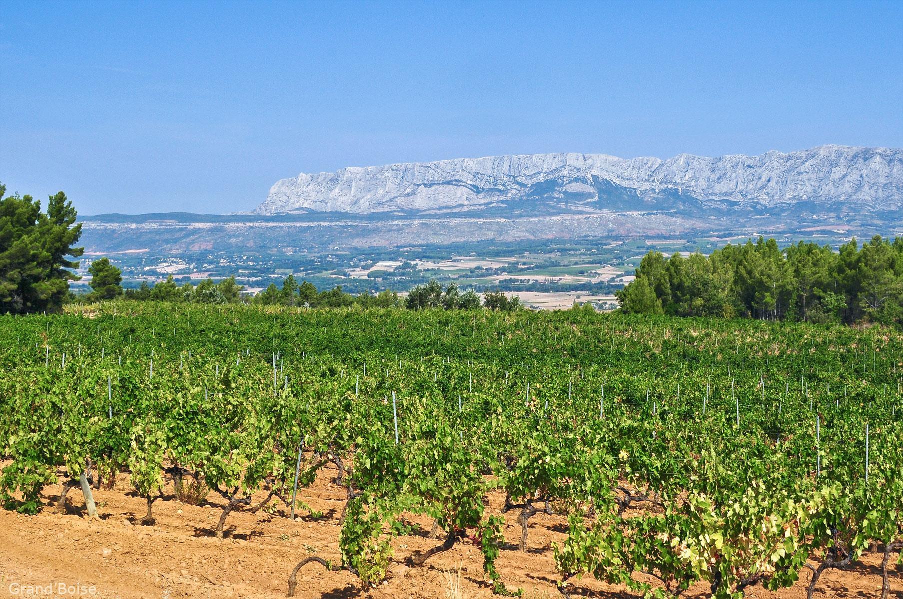 Short day: Aix en Provence & Wine Tour in Côtes de Provence Sainte-Victoire
